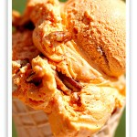 Pumpkin pecan ice cream… fall is coming fast!