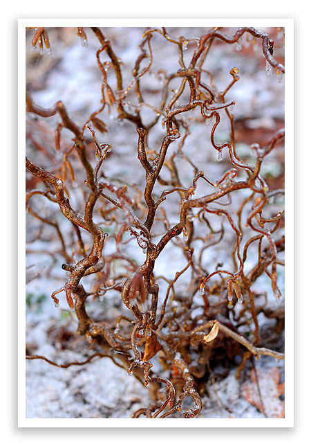 Doris Day - Winter Wonderland