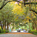 Savannah, Ga – The Hostess City of the South