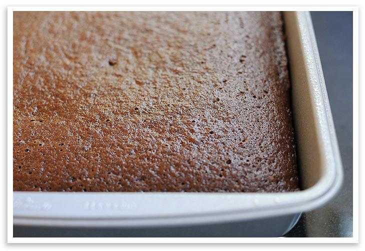 Praline Cake Squares