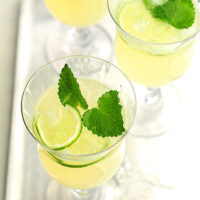 Honey Lemon Balm Spritzer Recipe
