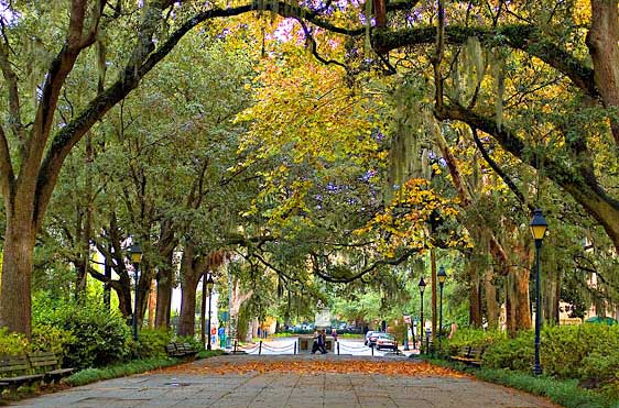 savannah georgia park