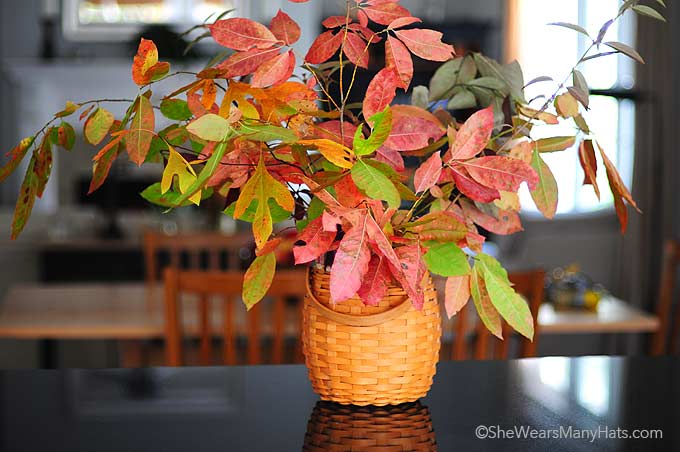Decorating for any fall occasion is easy and inexpensive with these Easy Fall Decorating ideas.