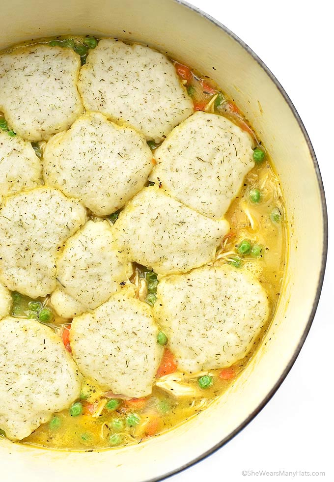 chicken and dumplings recipe no vegetables