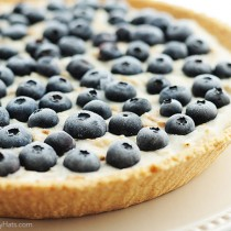 Frozen Blueberry Pie