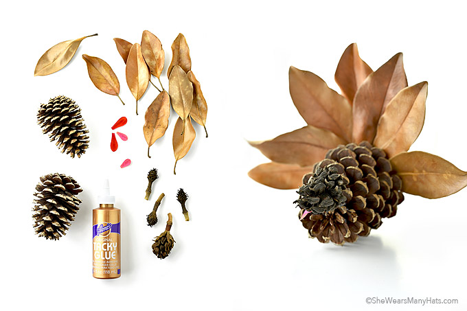 Fun Thanksgiving Pine Cone Turkey Crafts